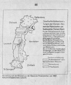 Inselhafte Waldverbreitung in der Ebenen-Gemeinde Michelstetten am Südrand der Steiner Alpen