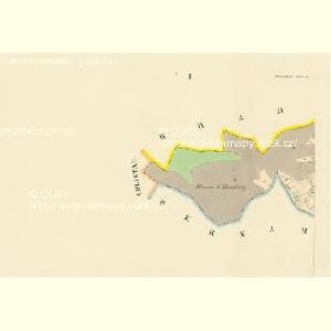 Borzikau (Borzikow) - c0417-1-001 - Kaiserpflichtexemplar der Landkarten des stabilen Katasters