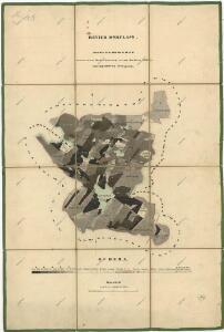 Porostní mapa revíru Pořejov, oddělení Dörflas
