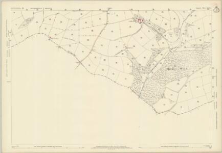 Somerset LXVIII.5 (includes: Brompton Regis; Morebath; Skilgate) - 25 Inch Map
