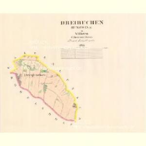 Dreibuchen (Bukowina) - m0290-1-001 - Kaiserpflichtexemplar der Landkarten des stabilen Katasters