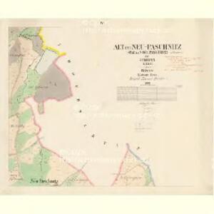 Alt und Neu Paschnitz(St.a Now.Pašešnice - c5641-1-003 - Kaiserpflichtexemplar der Landkarten des stabilen Katasters