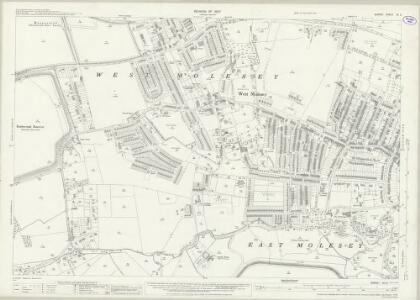 Surrey XII.2 (includes: East Molesey; West Molesey) - 25 Inch Map