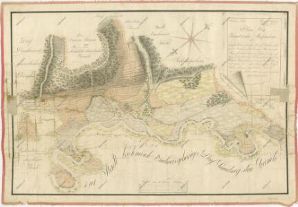 Geometrický plán lesa Březová stráň, zrušených rybníků Tyrského a Nového, přilehlých činžovních pozemků a zásobních luk u Vidova 1
