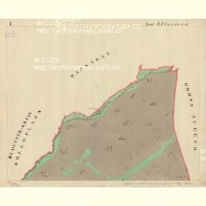 Trschitz - m3142-1-001 - Kaiserpflichtexemplar der Landkarten des stabilen Katasters