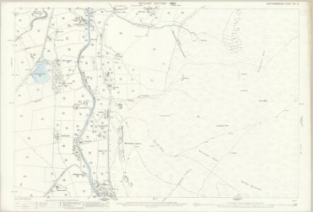 Northumberland (Old Series) CVII.15 (includes: Allendale Common; Allendale) - 25 Inch Map