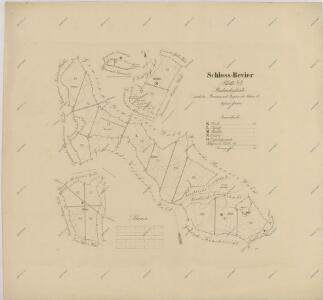 Porostní obrysová mapa polesí Zámecké 1