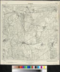 Meßtischblatt 2181 : Schlepzig, 1945