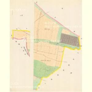 Pischtin - c5791-1-002 - Kaiserpflichtexemplar der Landkarten des stabilen Katasters