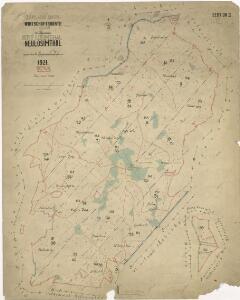Hospodářská mapa revíru Jedlina II. sekce