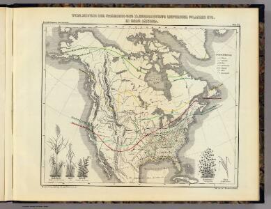 Verbreitung der nahrungs- und kleidungsstoffe liefernden Pflanzen etc. in Nord Amerika.