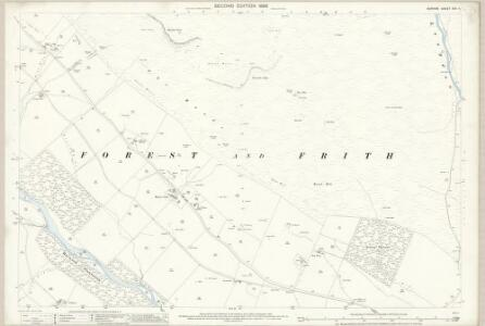 Durham XXX.11 (includes: Forest And Frith) - 25 Inch Map