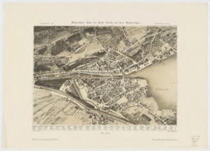 Malerischer plan der Stadt Zürich und ihrer Umgebungen