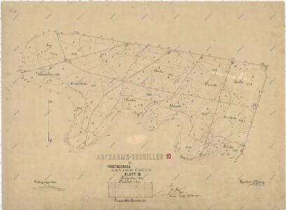 Záměrná mapa polesí Čečín
