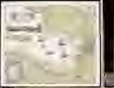 Accurata Delineatio Sinus Finnici Cronstadio Petropolin usque, una cum locis amoenis in litore ejus