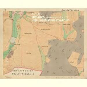 Trschitz - m3142-1-012 - Kaiserpflichtexemplar der Landkarten des stabilen Katasters