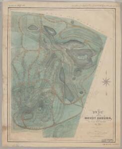Plan of Mount Auburn