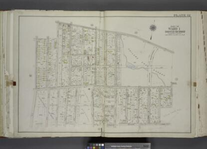 Part of Ward 1. [Map bound by Castleton Ave, Forest   Ave (Brighton), Greenwood Ave, University PL, Revere Ave (Laurel Ave), Laurel    Ave, Bard Ave, Lawrence Ave (Pelton Ave), Davis Ave, Pelton Ave (Lowell Ave),    Shaw Ave, Bement Ave, Cary Ave]