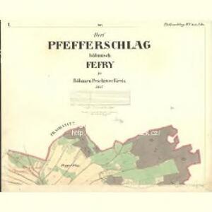Pfefferschlag - c4015-2-001 - Kaiserpflichtexemplar der Landkarten des stabilen Katasters