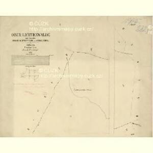 Ober Lichtenwalde - c2159-2-001 - Kaiserpflichtexemplar der Landkarten des stabilen Katasters