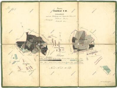 Porostní mapa revíru Tachov I-II