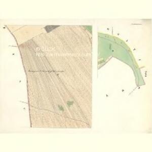 Pruschanek - m2439-1-001 - Kaiserpflichtexemplar der Landkarten des stabilen Katasters