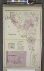 Livington [Township]; Glenco Mills [Village]; Livington Business Notices.; Lebanon Springs [Village]; Johnstown [Village]