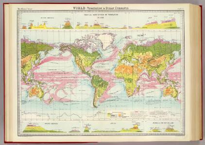 World - vegetation & ocean currents.
