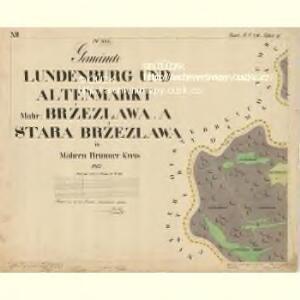 Lunderburg - m0243-1-019 - Kaiserpflichtexemplar der Landkarten des stabilen Katasters