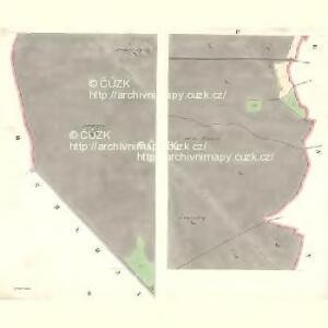 Raase - m2573-1-002 - Kaiserpflichtexemplar der Landkarten des stabilen Katasters