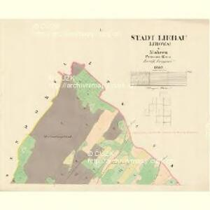 Liebau (Libowa) - m1773-1-001 - Kaiserpflichtexemplar der Landkarten des stabilen Katasters