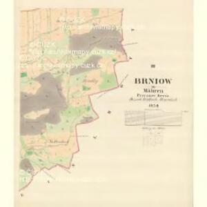 Brniow - m0219-1-003 - Kaiserpflichtexemplar der Landkarten des stabilen Katasters