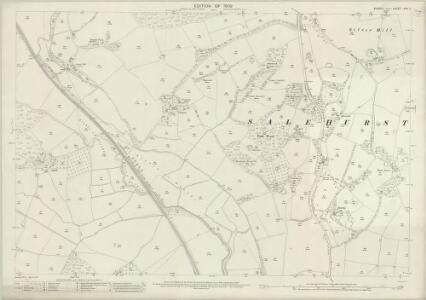 Sussex XXX.11 (includes: Salehurst) - 25 Inch Map