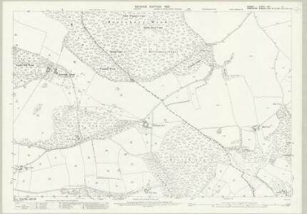 Dorset XVI.3 (includes: Alderholt; Cranborne; Damerham) - 25 Inch Map