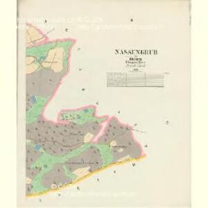 Nassengrub - c4827-3-002 - Kaiserpflichtexemplar der Landkarten des stabilen Katasters