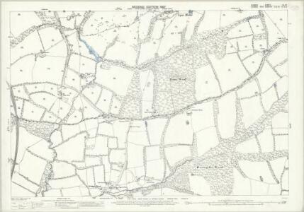 Surrey XL.16 (includes: Capel; Newdigate; Rusper) - 25 Inch Map