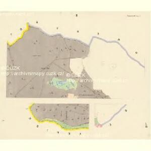 Frauenreuth - c3328-2-001 - Kaiserpflichtexemplar der Landkarten des stabilen Katasters