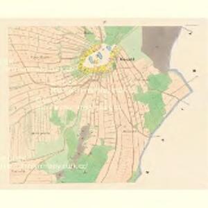 Wosant - c0081-1-004 - Kaiserpflichtexemplar der Landkarten des stabilen Katasters