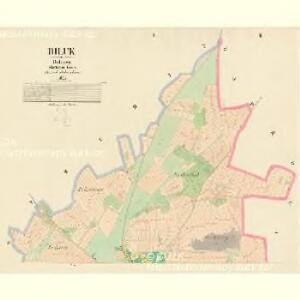 Biluk - c0233-1-001 - Kaiserpflichtexemplar der Landkarten des stabilen Katasters
