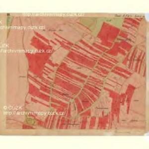 Nuesiedl - m2070-1-003 - Kaiserpflichtexemplar der Landkarten des stabilen Katasters