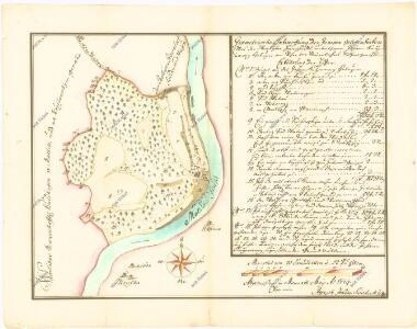 Geometrický nárys panského lesa v Malči, na který si činí nárok Jan Kučeravý ze Žďákova, list 1 1