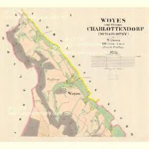 Woyes - m2991-1-001 - Kaiserpflichtexemplar der Landkarten des stabilen Katasters