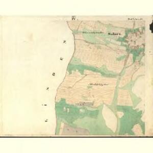 Saborz - c9010-1-004 - Kaiserpflichtexemplar der Landkarten des stabilen Katasters