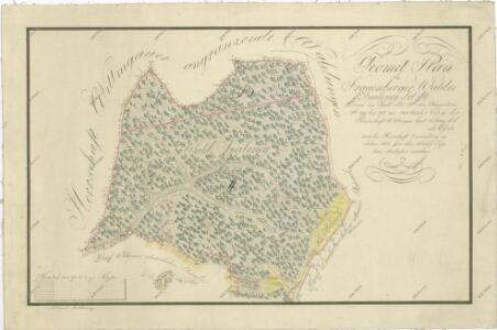 Geometrický plán hlubockého lesa Spálený, jehož část byla směnou připojena k panství Třeboň 1