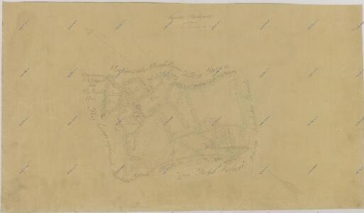 Záměrná mapa-brouillon-dvora Borkovice 1