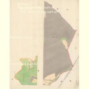 Bilnitz - m0305-1-005 - Kaiserpflichtexemplar der Landkarten des stabilen Katasters