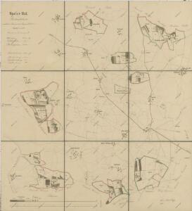 Porostní mapa polesí Bzí 1